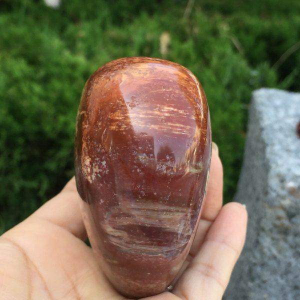 Opalized Polished Petrified Wood Heart