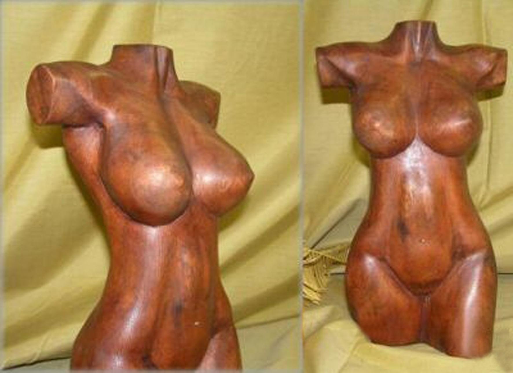 Nude Female Torso in Oakwood